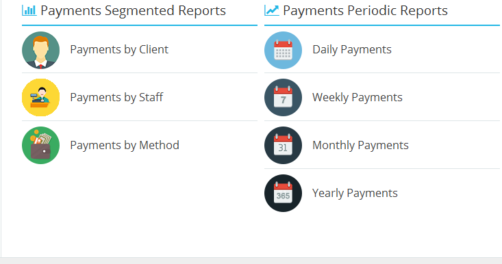 payments-segmented-reports
